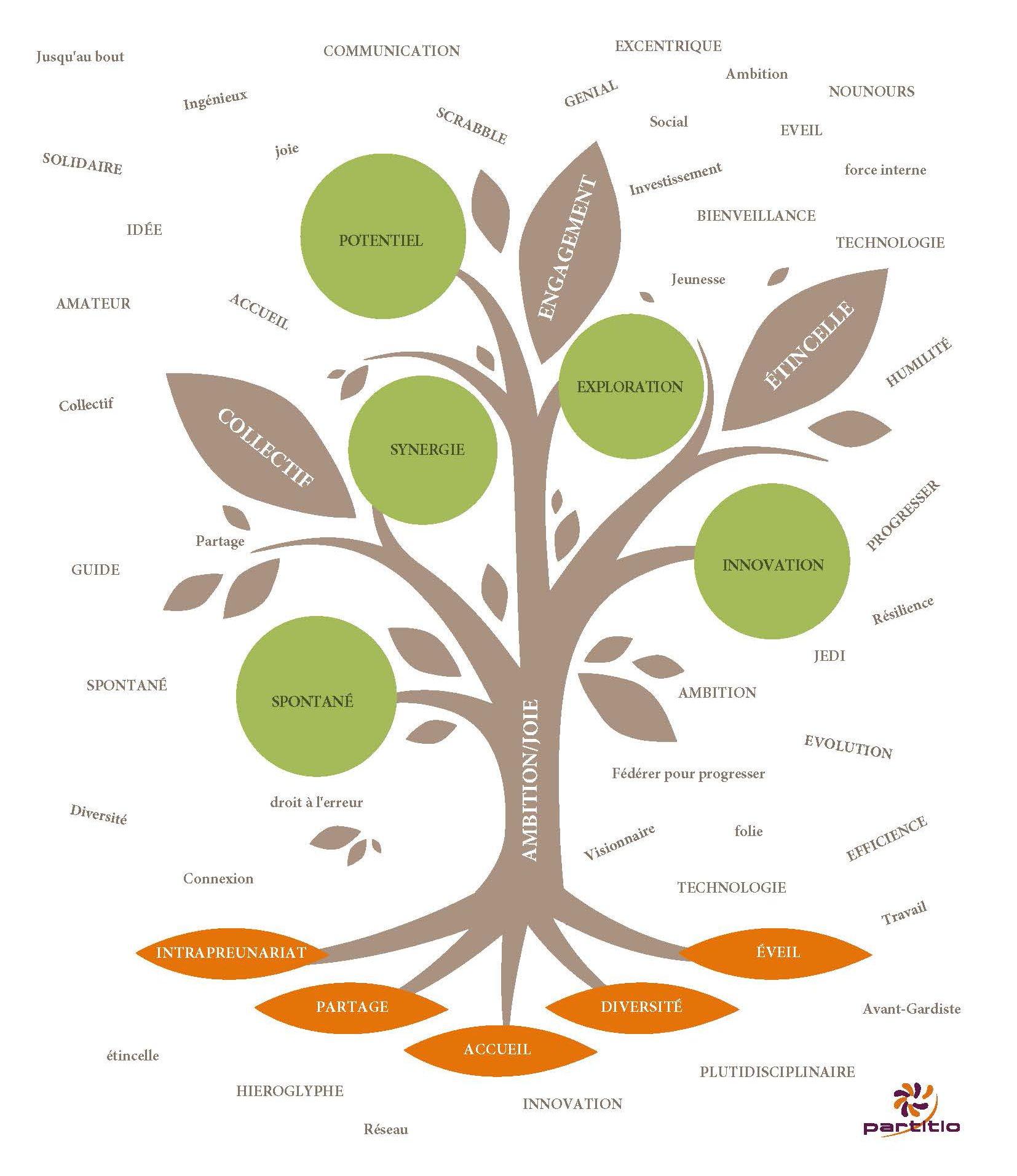 L'arbre de l'identité Partitio revisité